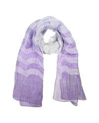 Armani Purple Scarf