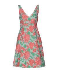 P.A.R.O.S.H. Green Knee-length Dress