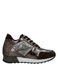 Sneakers & Tennis basses Tosca Blu en coloris Brown