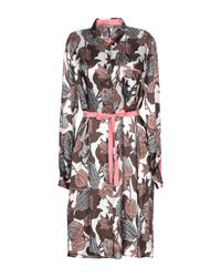 Maliparmi Brown Knielanges Kleid