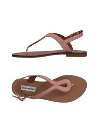 Steve Madden Brown Toe Post Sandal