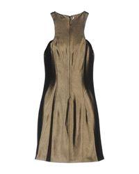 Dondup Multicolor Short Dress