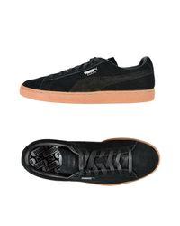 Sneakers & Tennis basses PUMA pour homme en coloris Black
