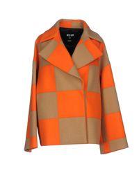 MSGM - Orange Coat - Lyst