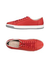 Geox Red Low-tops & Sneakers for men