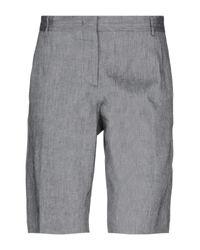 Maliparmi Gray Bermuda Shorts