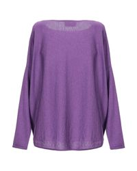 Snobby Sheep Purple Pullover