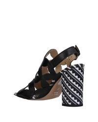 Loretta Pettinari | Black Sandals | Lyst