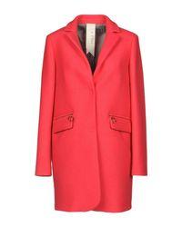 Annie P Red Coat