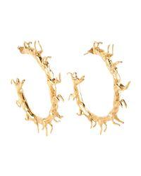 Smith/grey Metallic Earrings