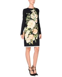 Dolce & Gabbana Black Short Dress