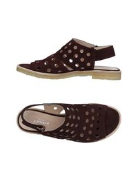 Audley Brown Sandals