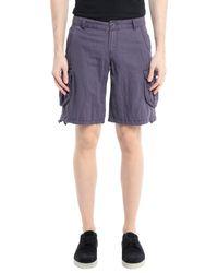 Ltb Purple Bermuda Shorts for men