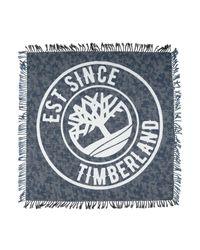 Foulard Timberland pour homme en coloris Blue