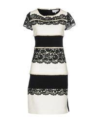 Anna Rachele Black Short Dress