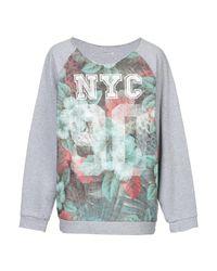 Absolut Joy Gray Sweatshirt for men