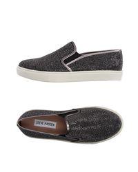 Steve Madden Black Low-tops & Sneakers
