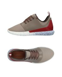 Bally Gray Low-tops & Sneakers for men