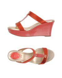 Rene Caovilla Red Sandals