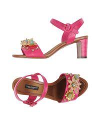 Dolce & Gabbana Multicolor Sandals