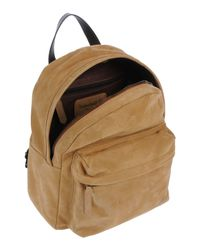 Timberland Multicolor Backpacks & Fanny Packs