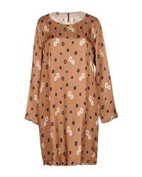 Diega Brown Short Dresses