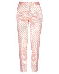 PT Torino Pink Hose