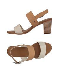 Timberland White Sandals