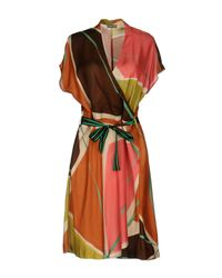 Maliparmi Brown Knee-length Dress