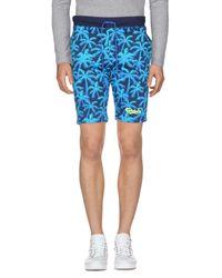 Carlsberg Blue Bermuda Shorts for men