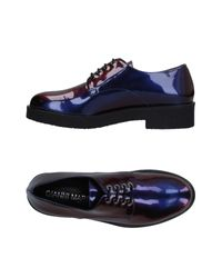 Gianni Marra Purple Lace-up Shoe