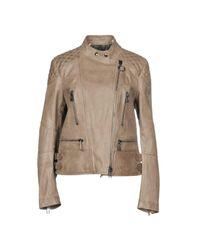 Belstaff Gray Jacket