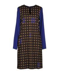 Robe courte Maliparmi en coloris Blue