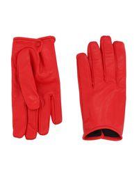 Valentino Garavani Red Gloves for men