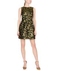 Tonello Green Short Dresses