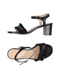Tila March Black Sandals