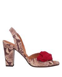 Chie Mihara Natural Sandals