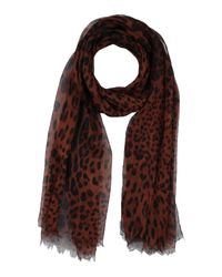 Étole Dolce & Gabbana en coloris Brown