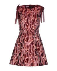 Robe courte Giamba en coloris Pink