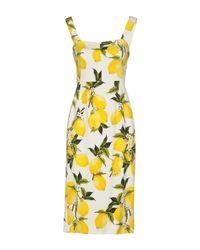 Dolce & Gabbana White Knee-length Dress