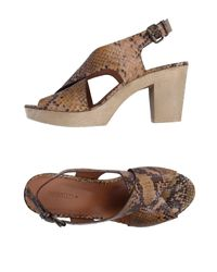 Sessun Brown Sandals