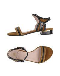Lanvin Brown Sandals