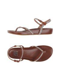 Bibi Lou Brown Toe Strap Sandal