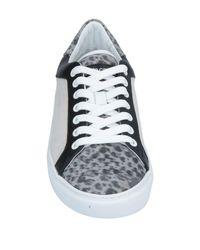Sneakers & Tennis basses Roberto Cavalli pour homme en coloris Gray