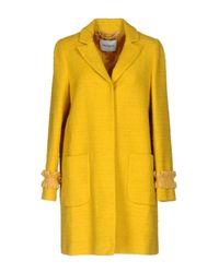 MAX&Co. Yellow Coats