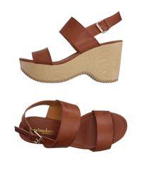 Primadonna Brown Sandals