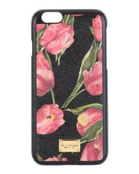 Dolce & Gabbana Pink Covers & Cases