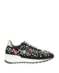 Casadei Black Low-tops & Sneakers
