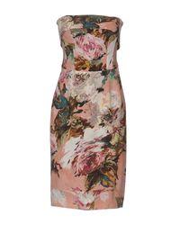Dolce & Gabbana Pink Knee-length Dress