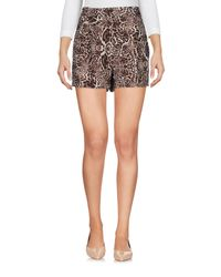 The Kooples Multicolor Shorts